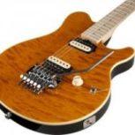 تدریس خصوصی گیتار الکتریک و کلاسیک