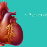 دکتر ایرج قدوسی-متخصص جراحی قلب و عروق