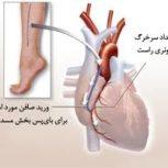 دکتر پریوش کفایی-متخصص بیماریهای قلب و عروق