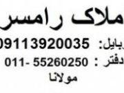 -1196217_O0Hr3p_m_m