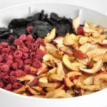 بهترین دستگاه خشک کن میوه و سبزیجات