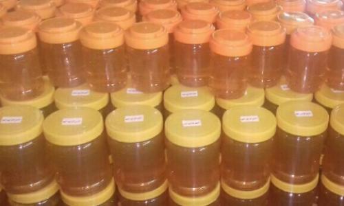 عسل گون اصل