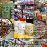 پت شاپ ، کلینیک ، پانسیون و فروشگاه گربه